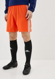 Шорты спортивные Adidas AD002EMJFNM7INXL