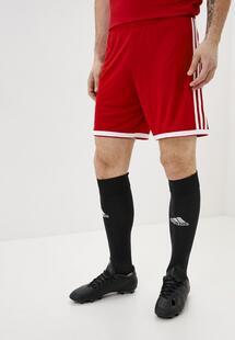 Шорты спортивные Adidas cw2019