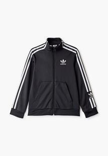 Олимпийка Adidas AD093EBIALV9CM128