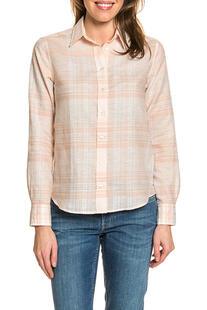 shirt Gant 5966382