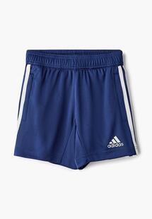 Шорты спортивные Adidas AD002EBEEBT1CM128