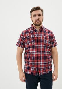 Рубашка COLIN'S MP002XM20WMFINXXL