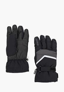 Перчатки горнолыжные Ziener ZI003DMCQBJ4INC105