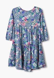 Платье ACOOLA MP002XG00U4ICM146