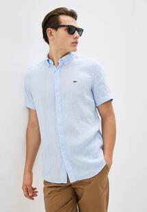 Рубашка Lacoste MP002XM24ZT9CM390