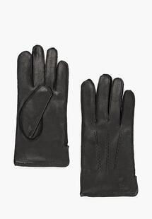 Перчатки Eleganzza MP002XM23Z57INC080