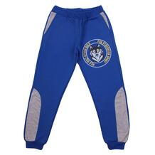 Спортивные брюки Sladikmladik Wild wolf 13337848