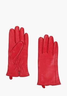 Перчатки Vitacci MP002XW03SRUINC075