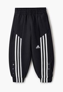 Брюки спортивные Adidas AD002EGLWIW0CM140