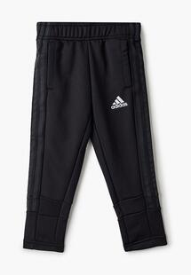 Брюки спортивные Adidas AD002EBLWKG4CM104
