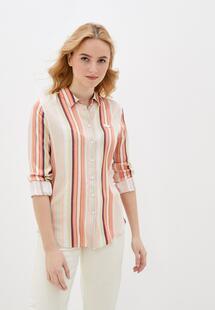 Рубашка Lacoste MP002XW057JYE400