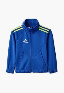 Олимпийка Adidas AD002EKLWJV3CM176