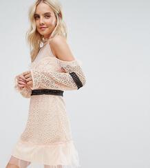 Кружевное платье мини с открытыми плечами и контрастным поясом -Розовый цвет True Decadence Petite 6532053