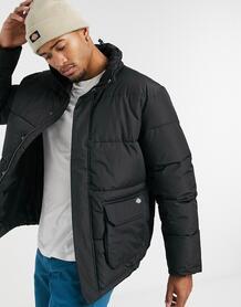 Черная дутая куртка - Olaton-Черный Dickies 10497877