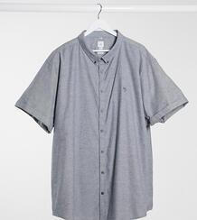 Серая оксфордская рубашка с короткими рукавами Big & Tall-Серый River Island 9855306