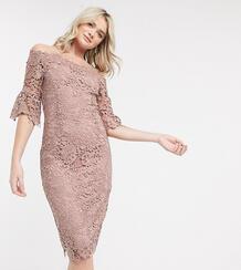 Розовое кружевное платье-футляр миди -Розовый Paper Dolls Tall 9253137