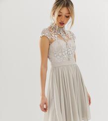 Серое платье мини с кружевным воротником -Серый Chi Chi London Petite 8051390