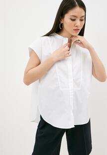 Рубашка Windsor RTLAAD941401G360