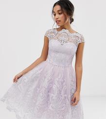 Розовое короткое приталенное платье миди из кружева -Розовый Chi Chi London Petite 8198413