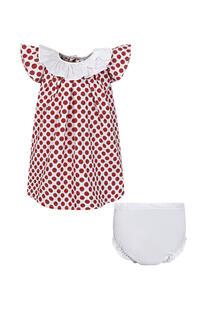 Платье Aletta 13461321