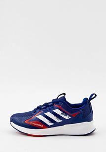 Кроссовки Adidas RTLAAK438501B055