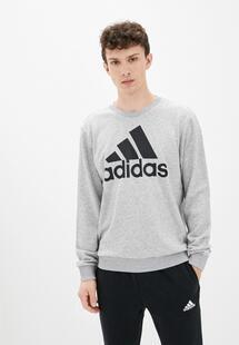 Свитшот Adidas RTLAAL029801INS