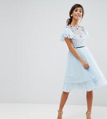 Платье мини из тюля ASOS PETITE - Серый 1148445