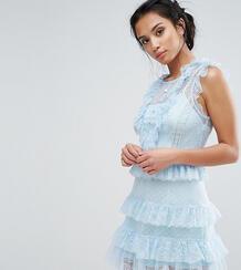 Платье с оборками из сетки с цветочным узором и в горошек True Decaden True Decadence Petite 975898