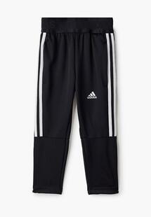 Брюки спортивные Adidas AD002EBJMAY8CM104