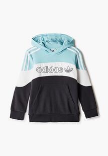 Худи Adidas AD093EBJLVY9CM164