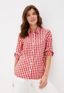 Рубашка Gant 4300037
